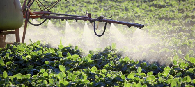 Use of Herbicides in Genetically-Engineered Crops Is Increasing in the U.S.