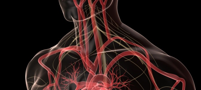 Poor Cardiovascular Health Can Lead to Decreased Memory and Cognition, Says Study